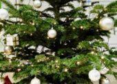 Kosmetiku najde pod stromečkem více než polovina Čechů